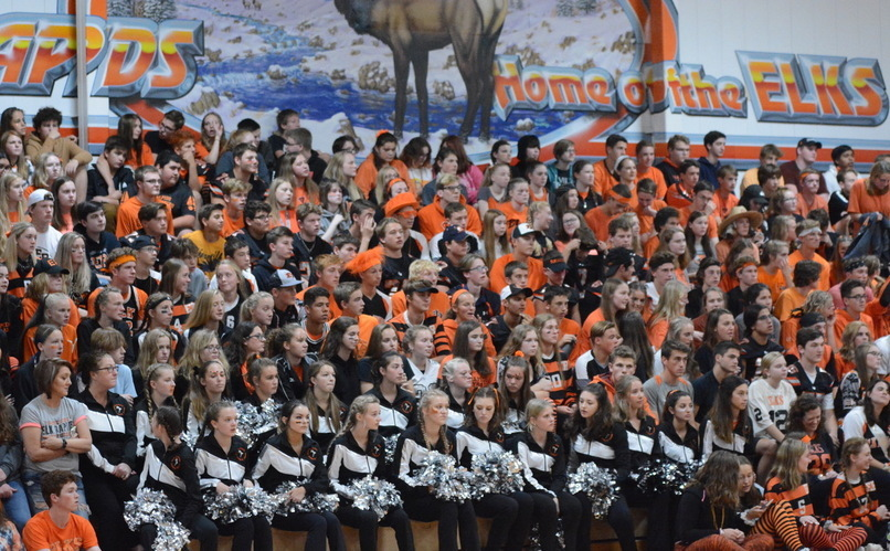 group of 100s of elementary students in orange/black cheering
